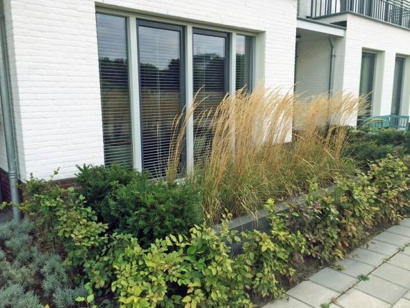 groen rustpunt in Den Bosch